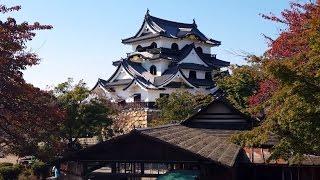 Hikone Japan  city photos : Hikone Castle and Kyoto, Japan - Day 6 (Part 2)