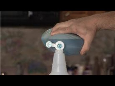 Carpet Cleaning : Cleaning Solution for Self-Cleaning a Carpet