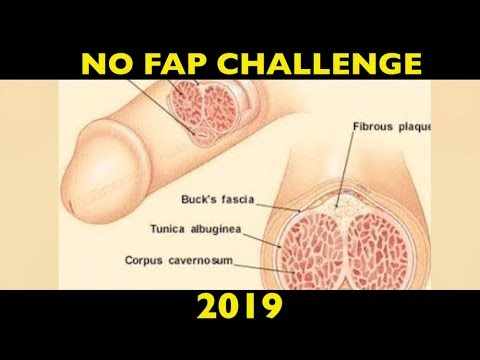 ** Effects of excessive masturbation** on your health (including hair loss and depression) NO FAP
