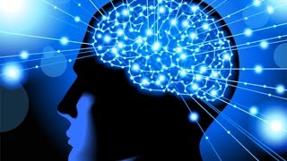 How to Rewire & Evolve Your Brain to Experience a New Reality - Dr. Joe Dispenza