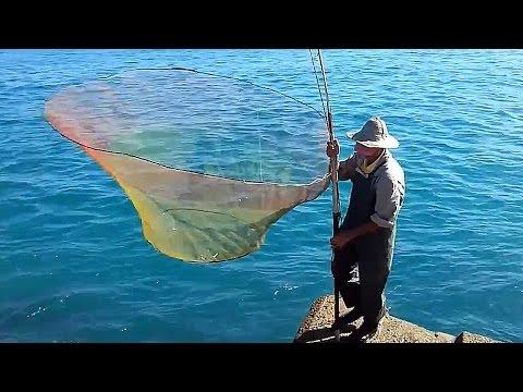 что такое паук на рыбалке