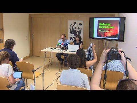 07/07/2016 WWF pide identificar zonas vulnerables a incendios