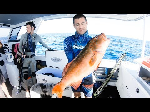 Insane Afternoon And Night Camping On Our Boat Spearfishing And Fishing - Ep 60 Part 2 - Thời lượng: 14 phút.
