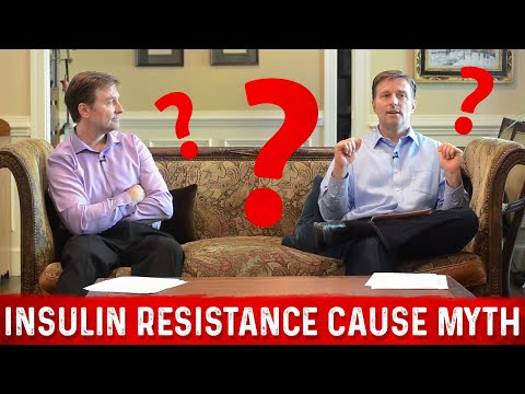 Fat Is NOT the Cause of Insulin Resistance