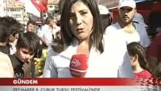 trt haber 8. uluslararasi cubuk tursu festivali 20123