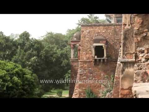 Hauz Khas complex with fort and lake, New Delhi