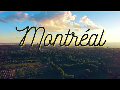 Montréal Through the Eyes of Tourists