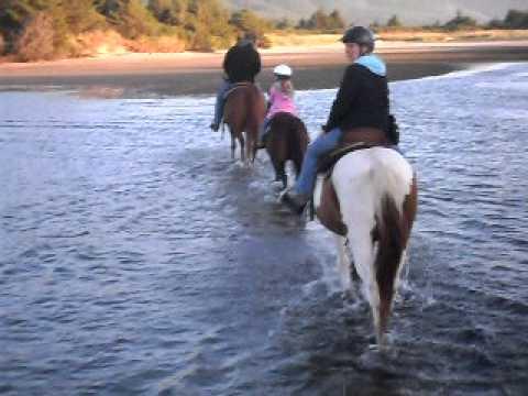 horse thru bay water.AVI
