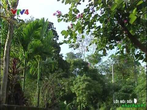 Phim Lời Nói Dối - Phim Việt Nam 2002