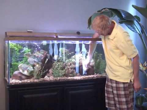 How To Clean A Fish Tank / Aquarium Part 1