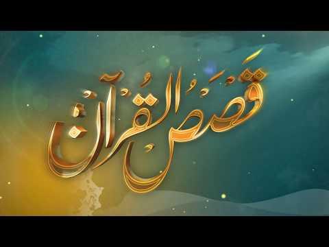 الحلقة (16) برنامج قصص القرآن