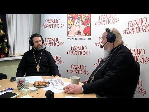 Радио «Радонеж». Протоиерей Димитрий Смирнов. Видеозапись прямого эфира от 2017.12.23