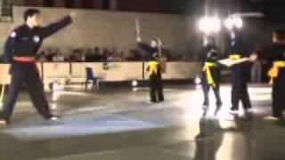 Festival arts martiaux combat simulé Antoine
