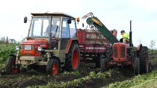 Nonton Sugar Beet Harvest 2017   Mf 690  Fiat 600   615  Volvo Bm 400   Victor  Zetor   Danish Agriculture Film Subtitle Indonesia Streaming Movie Download