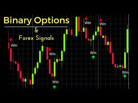 License key binary option robot