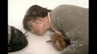 Nonton Themes from the Eyes of Dawn, 여명의 눈동자 주제곡, Saturday Night Music Show 19931002 Film Subtitle Indonesia Streaming Movie Download