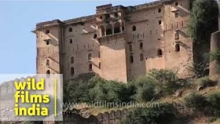 Tonk India  City pictures : Kakod Fort in Tonk, Rajasthan