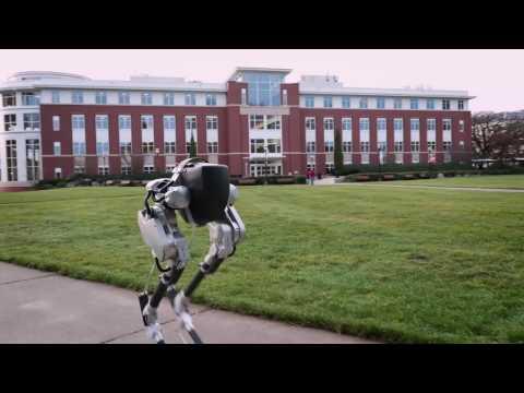 cassie, robot, tecnología loop, movilidad