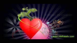 Te Regalo Mi Corazon - Postales Animadas Para El Dia De San Valentin