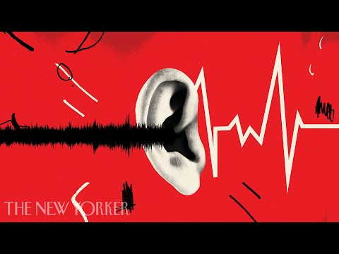 Why Noise Pollution Is More Dangerous Than We