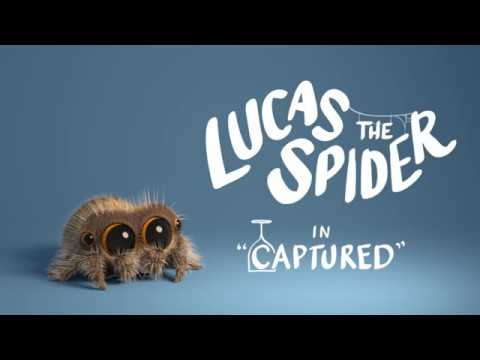 Lucas the Spider in Captured