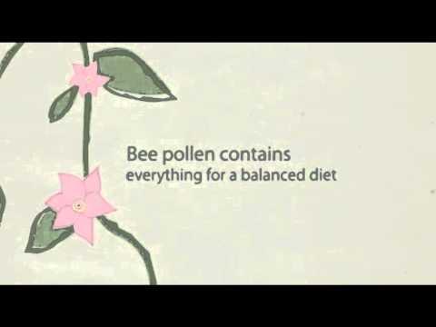 Xtend-Life Bee Pollen Health Benefits
