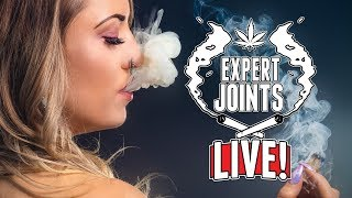 Expert Joints LIVE - Internet Savvy by Pot TV