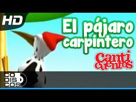 Canticuentos - El Pájaro Carpintero