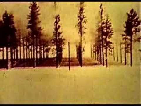 Atomic Bomb TREES