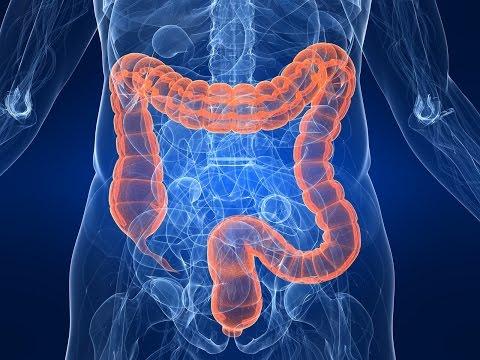 come pulire l'intestino e risolvere i problemi che ci affliggono!
