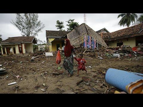 Κινδυνεύουν οι ρινόκεροι της Ιάβας μετά το τσουνάμι