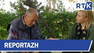 Reportazh - Jeta dhe kontributi i një veterani