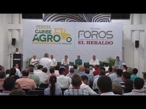 Foro El Heraldo Montería, El Copey, Valledupar,
