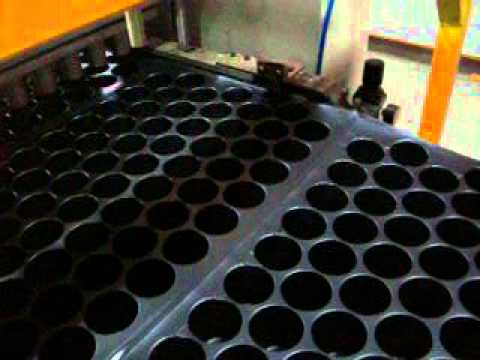 Seed Tray 80 By Sunforming Machines, Nashik