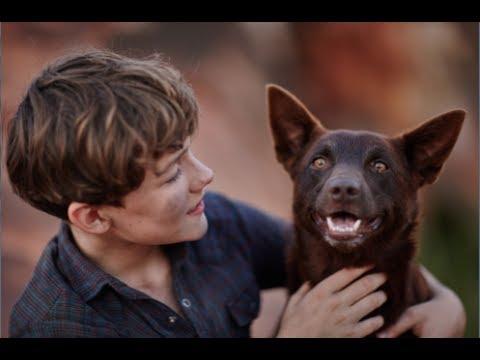 Red Dog: True Blue (UK Trailer)