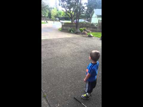 Little boy talks to turkeys (and they talk back)