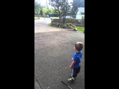 Little boy talks to turkeys (and they talk back)