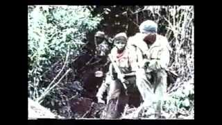 The Story of the Biafran War (Part 3)