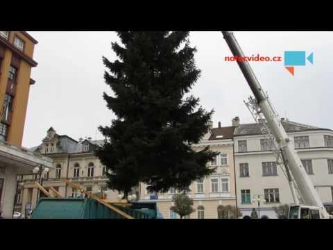 Vánoční strom pro město Jablonec