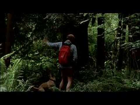 Old Joy Trailer