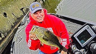 Video Big Bass Spawning in Dirty Water - Catch Bedding Fish MP3, 3GP, MP4, WEBM, AVI, FLV Mei 2019