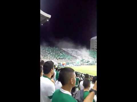 La hinchada verde y blanco - Frente Radical Verdiblanco - Deportivo Cali