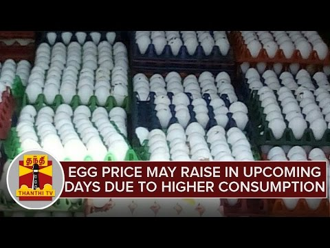 Egg-Price-May-Raise-in-Upcoming-Days-Due-to-Higher-Consumption