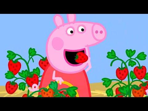 Peppa Pig Full Episodes   Season 8   Compilation 47   Kids Video