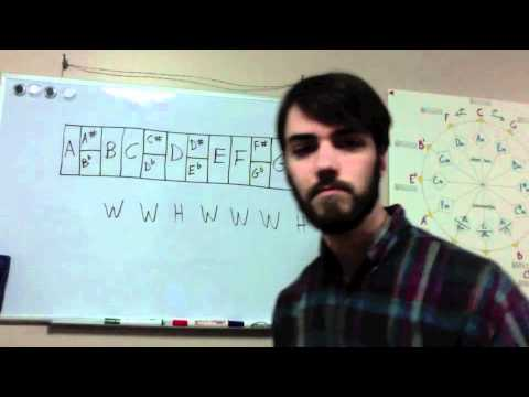 Music Theory Basics for Guitar: Lesson 2 – The Major Scale