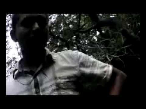 Video Odia xxx three boy with jharana download in MP3, 3GP, MP4, WEBM, AVI, FLV January 2017