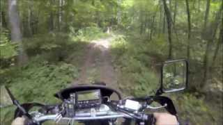 5. Stock 2013 Suzuki DR-Z 400s on a Trail