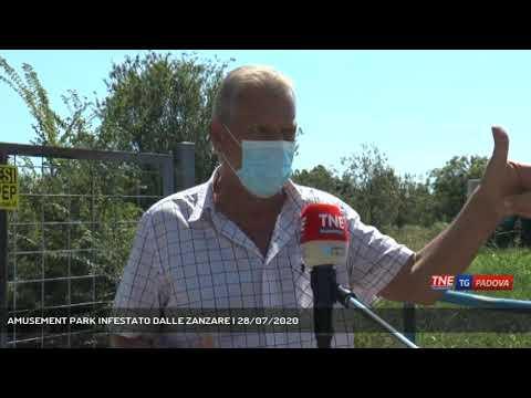 AMUSEMENT PARK INFESTATO DALLE ZANZARE | 28/07/2020