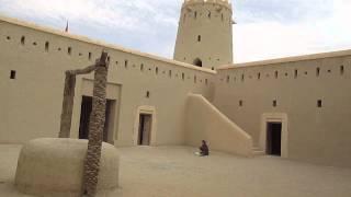 Liwa United Arab Emirates  City pictures : In Desert of Oasis Liwa, United Arab Emirates , February 2014