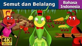 Video Semut dan Belalang   Dongeng anak   Kartun anak   Dongeng Bahasa Indonesia MP3, 3GP, MP4, WEBM, AVI, FLV Maret 2019